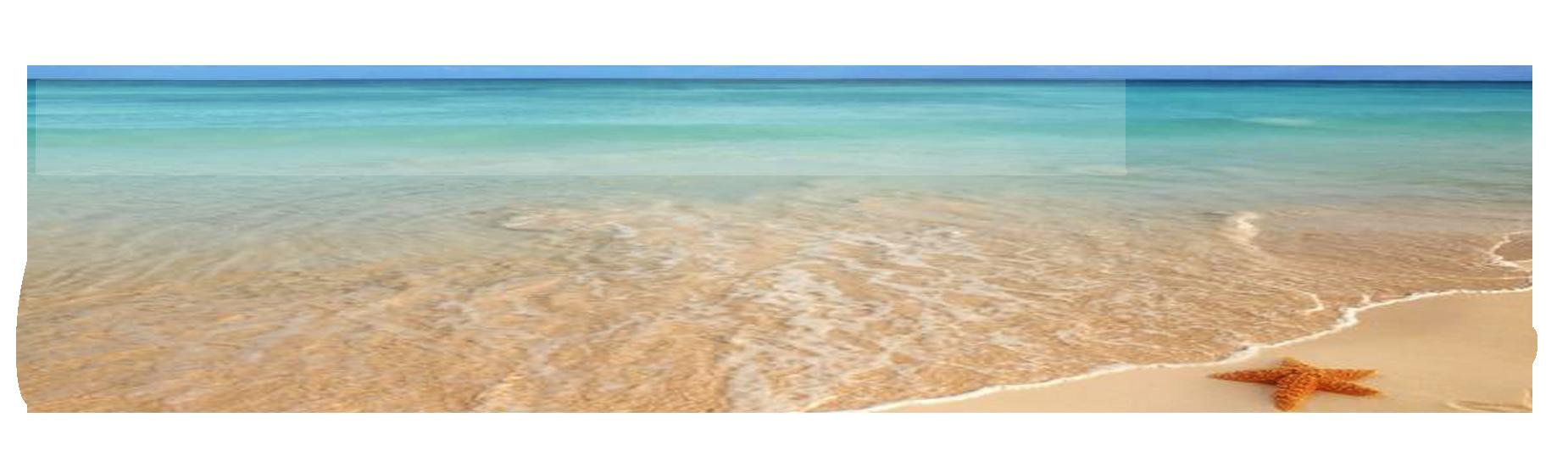 Logo La Maison de la Mozzarella été